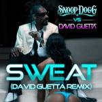 Sweat - Snoop Dogg vs David Guetta Remix